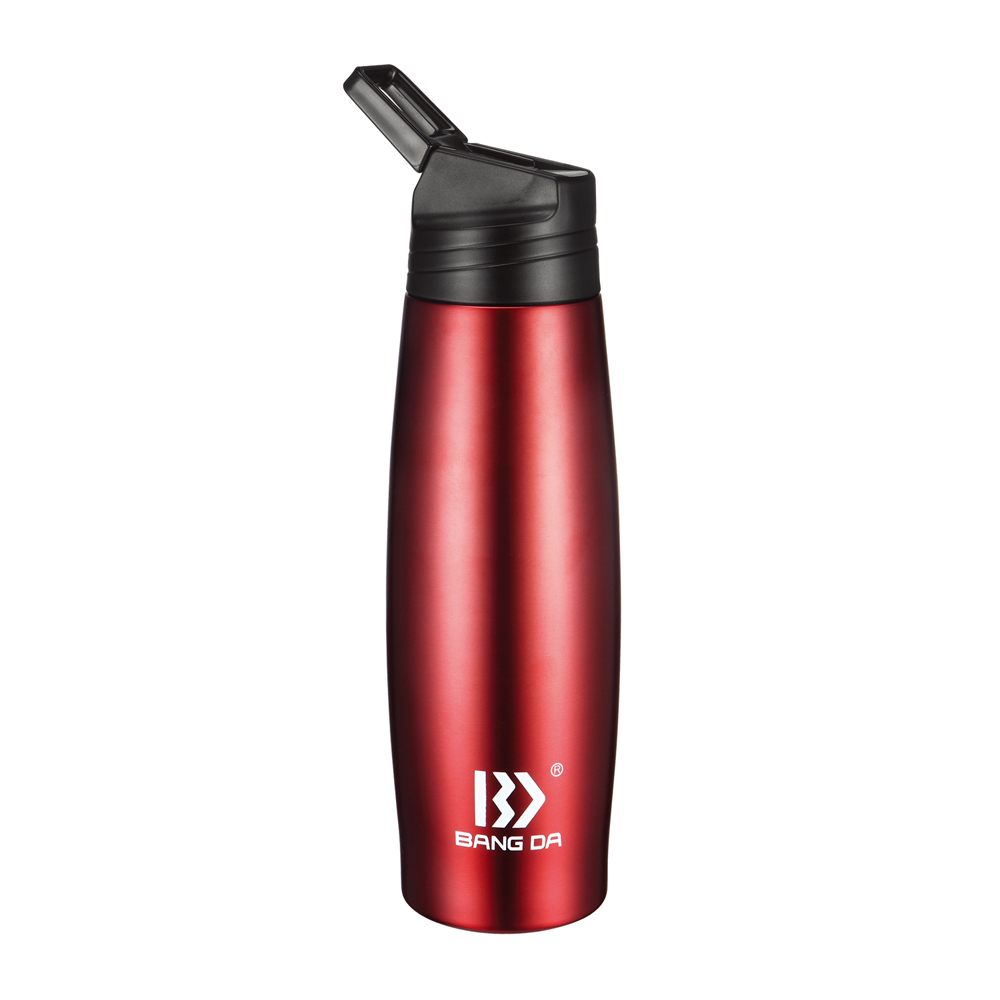 Stainless Steel Vacuum Insulated Water Bottle With Straw
